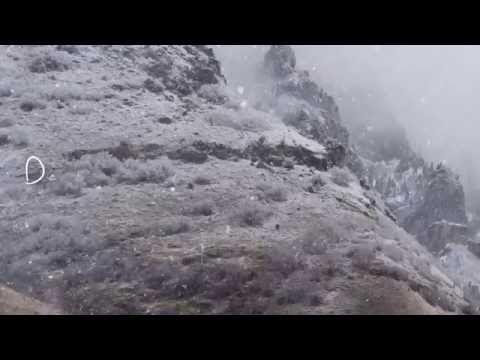 LETZTE INSTANZ - Weiß wie der Schnee (2016) // official lyric video // AFM Records
